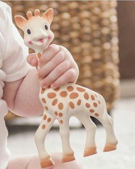 סופי הג'ירפה נשכן לתינוק